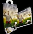 Thumbnail Football (American Soccer) Niche Site